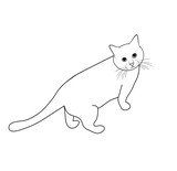 Vector illustration, isolated home cat in black and white colors, outline hand painted drawing