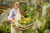 Young woman holding a wooden box full of spring flowers in the greenhouse - 206864741