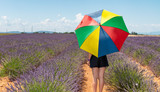 Back view of woman with colorful umbrella on a lavender meadow - 206867397