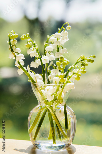 Fotobehang Lelietjes van dalen Bouquet of lily of the valley blossoms; soft light illuminating the delicate flowers for a clean fresh look.