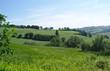 Paesaggio rurale marchigiano - 206868729