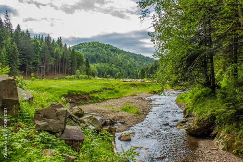 Fotobehang Bergrivier Nature forest mountain valley with stream beautiful landscape