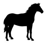 Silhouette of a standing horse - 206879920