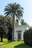exotic garden with palm Bellagio Italy Como - 206894526