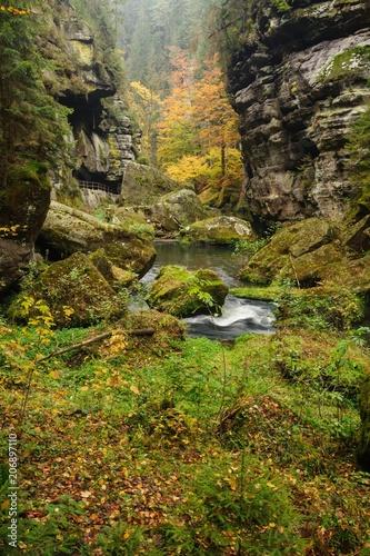 Fotobehang Herfst Autumn colors river