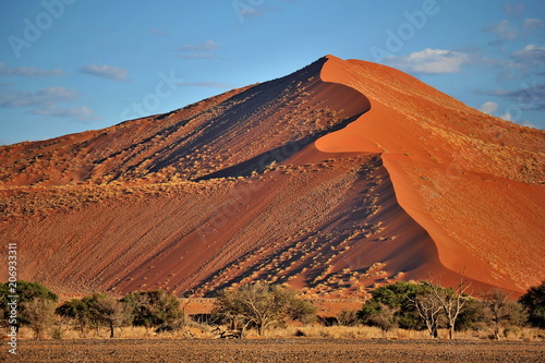 Fotobehang Baksteen Namibia. Dunes from red sand