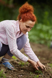 Farmer woman planting pepper - 206954568