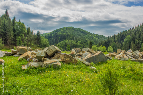 Fotobehang Donkergrijs green summer forest mountain landscape somewhere on country side