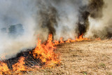 Global Warming. Burning agricultural field, smoke pollution. Image of global and their natural disaster risk. - 206973935