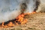 Global Warming. Burning agricultural field, smoke pollution. Image of global and their natural disaster risk. - 206973985