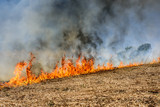 Global Warming. Burning agricultural field, smoke pollution. Image of global and their natural disaster risk. - 206974137
