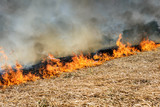Global Warming. Burning agricultural field, smoke pollution. Image of global and their natural disaster risk. - 206974179