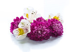 bouquet of beautiful chrysanthemums and lysianthus - 206983503