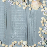blue wooden background with seashells and corals - 207002390