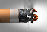 Cost Of Smoking - 207007307