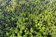 Luftaufnahme Schurwald, Rems-Murr-Kreis, Baden Württemberg, Deutschland - 207011197