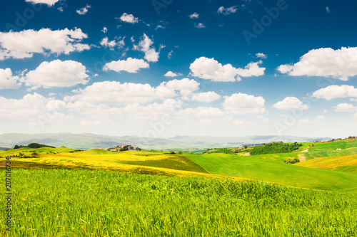 Canvas Toscane Green fields and blue sky in Tuscany, Italy