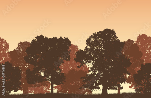 Fotobehang Chocoladebruin Seamless brown vector forest landscape with deciduous trees and grassy land.