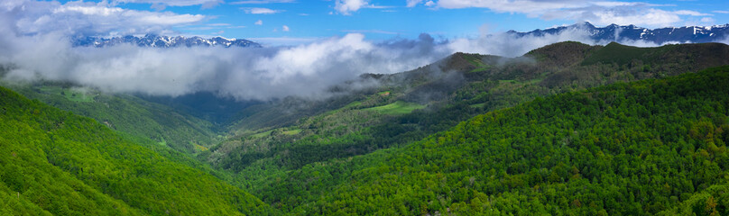 Forest and mountains from Viewpoint of Piedrasluengas in the Natural Park of Fuentes Carrionas, province of Palencia