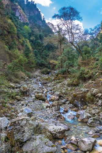 Fotobehang Bergrivier A small mountain river in Nepal.