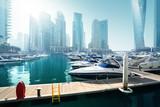 Dubai Marina, United Arab Emirates - 207182751