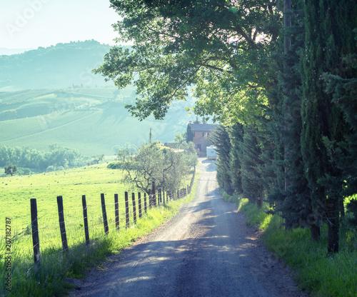 Canvas Toscane country road, tuscany, Italy