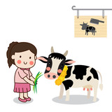 Girl feeding a cow and saving cattle lives from the Slaughterhouse with white background.