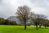 Gardens of Muckross House  in Ireland
