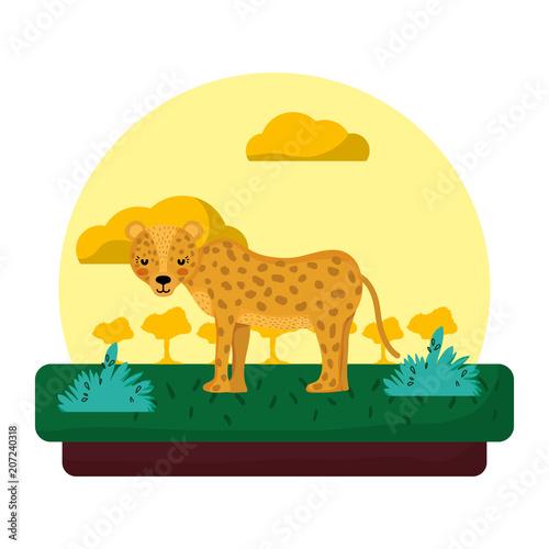 Fototapeta adorable leopard wild animal in the landscape