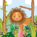 Cute wildlife lion cartoon - 207254535