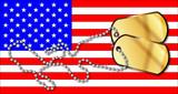 USA Stars And Stripes And Dog Tag Set - 207255145