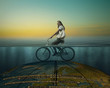 Surrealistic composition - a cyclist riding on the globe under water