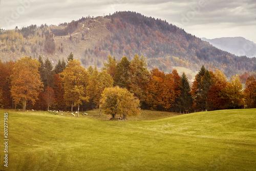 Canvas Honing Paradies in Bayern