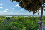 Sian kaan lagoon and jungle reserve  point of view from above - 207287929