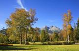 Park in Tatranska Lomnica. Slovakia