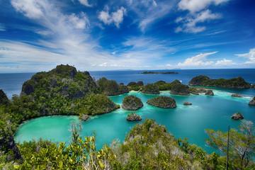 Pianemo islands at the Raja Ampat archipelago (Indonesia) © Matthias Kestel