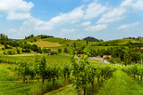 Austria Vineyards vine street south Styria travel spot - 207316931