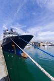 Remorqueur amarré au quai du port de Brest - 207322711