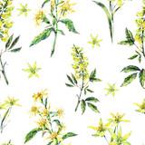 Watercolor summer seamless pattern of medicinal flowers, wildflowers - 207334775