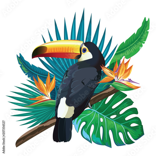 Wall mural Toucan, exotic birds, tropical flowers, palm leaves, jungle leaves, bird of paradise.