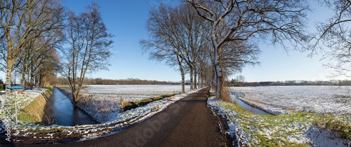 Fotobehang Chocoladebruin Winterlandscape with snow Netherlands. Lane with trees