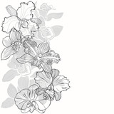 Floral background with orchids on a white background. Vector illustration with place for text. Vertical composition. Greeting card, invitation or isolated elements for design.
