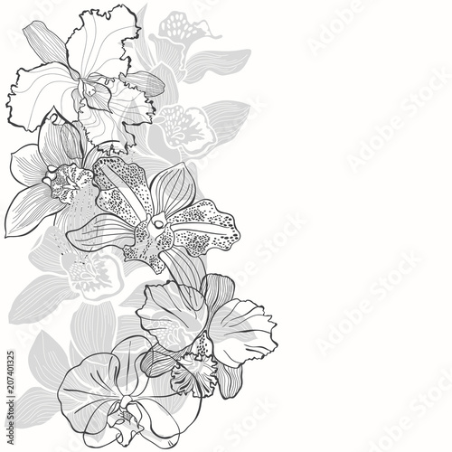 Floral background with orchids on a white background. Vector illustration with place for text. Vertical composition. Greeting card, invitation or isolated elements for design. - 207401325