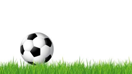 Ballon de football sur gazon