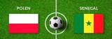 Fußball - Polen gegen Senegal - 207419777