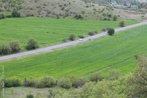 Fotobehang Olijf valley landscape
