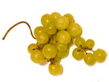 a bunch of yellow grapes on a white background