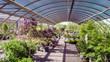 Leinwanddruck Bild - Garden center