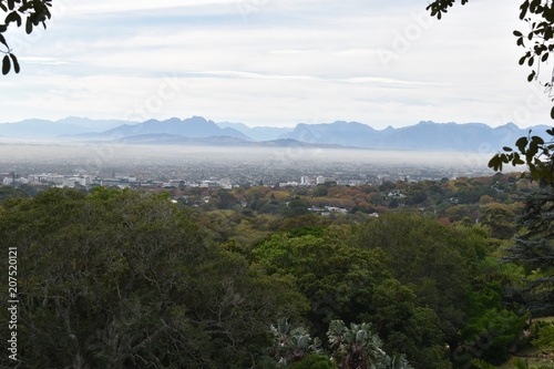 Fotobehang Grijze traf. Landscape at the Botanical Garden with the city in background in Cape Town in South Africa