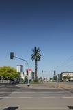 The Artificial palm tree on Charles de Gaulle's traffic circle in the Warsaw downton. One of the most recognizable landmarks in Warsaw, Poland.